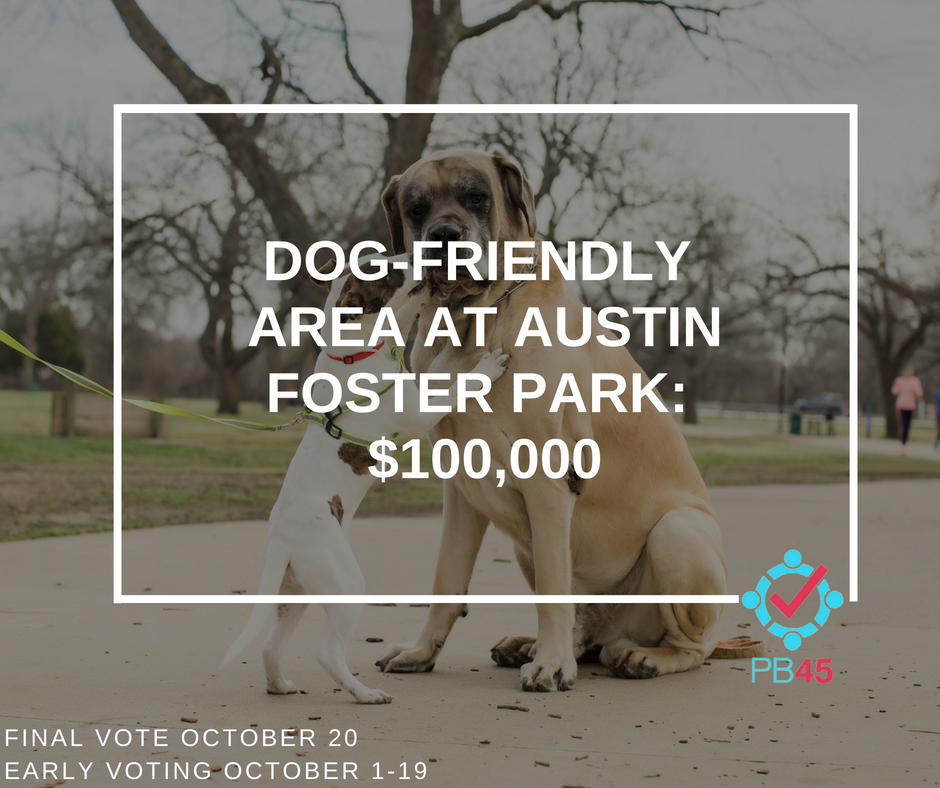 Austin-Foster Dog-Friendly-Area
