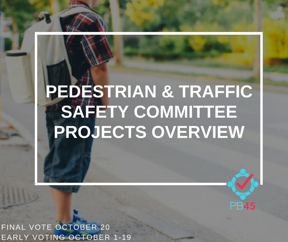 Pedestrian and Traffic Safety Committee Overview