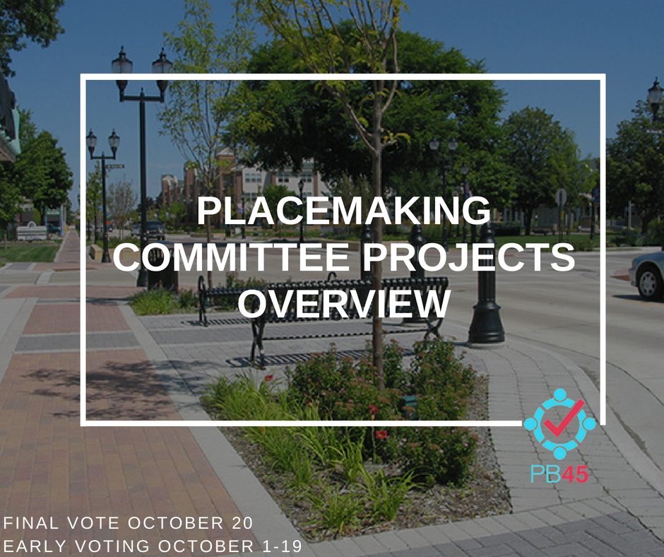 Placemaking Committee Overview